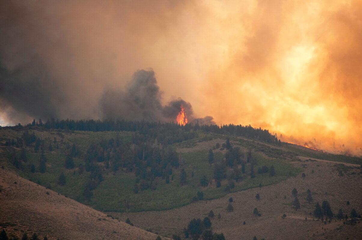oregon california fires